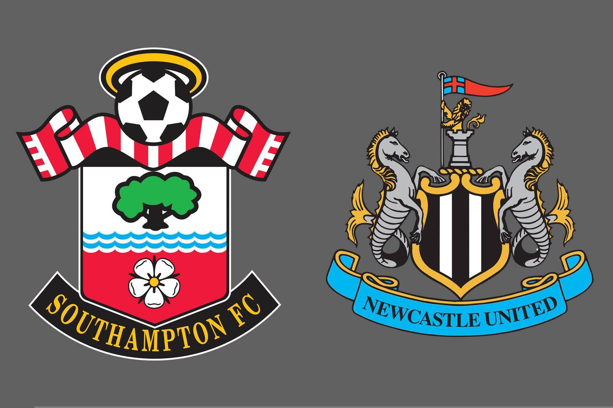 Premier League de Inglaterra: Southampton venció por 2-0 a Newcastle como local