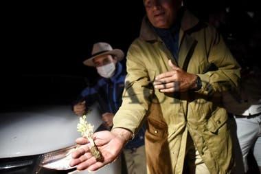 Luis Miguel Etchevehere muestra a LA NACION un cultivo del campo, fruto de la huerta de los activistas