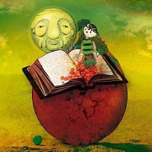 Afiche de La biblioteca de los libros desordenados